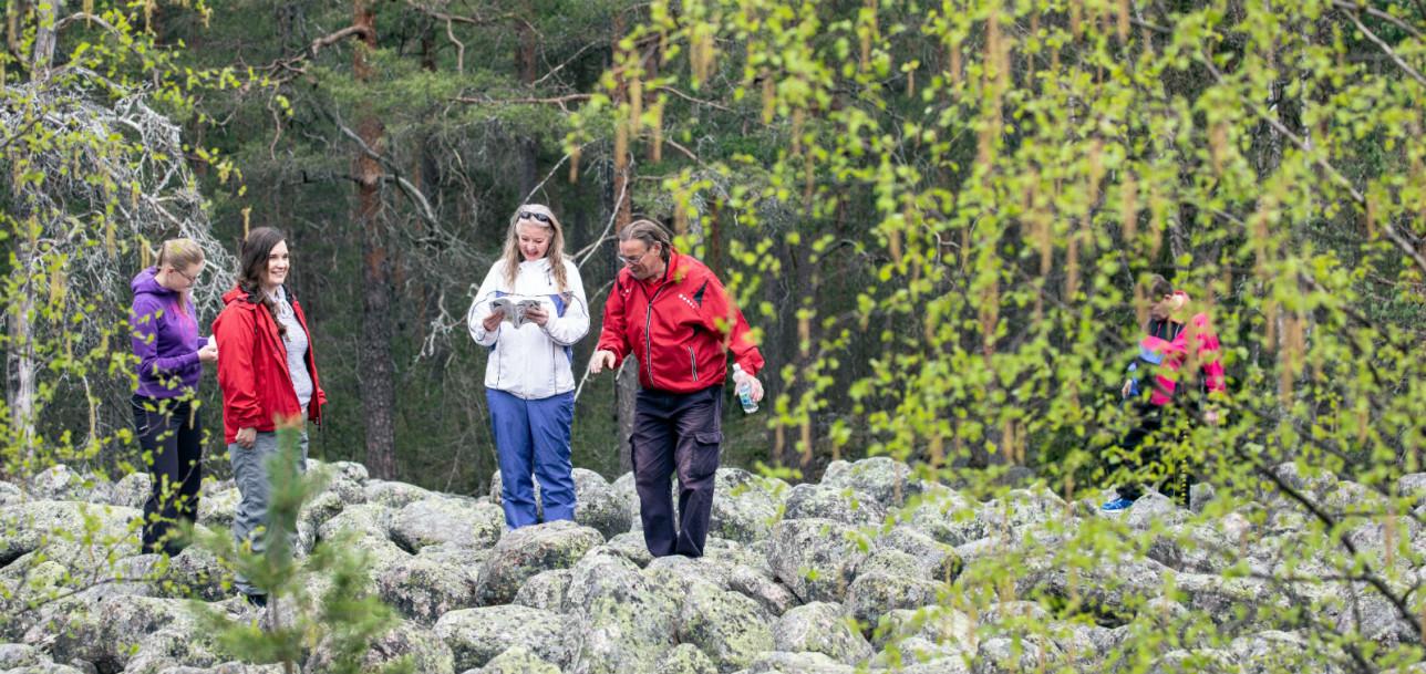 Pieni joukko ihmisiä seisoo kivien päällä metsämaisemassa