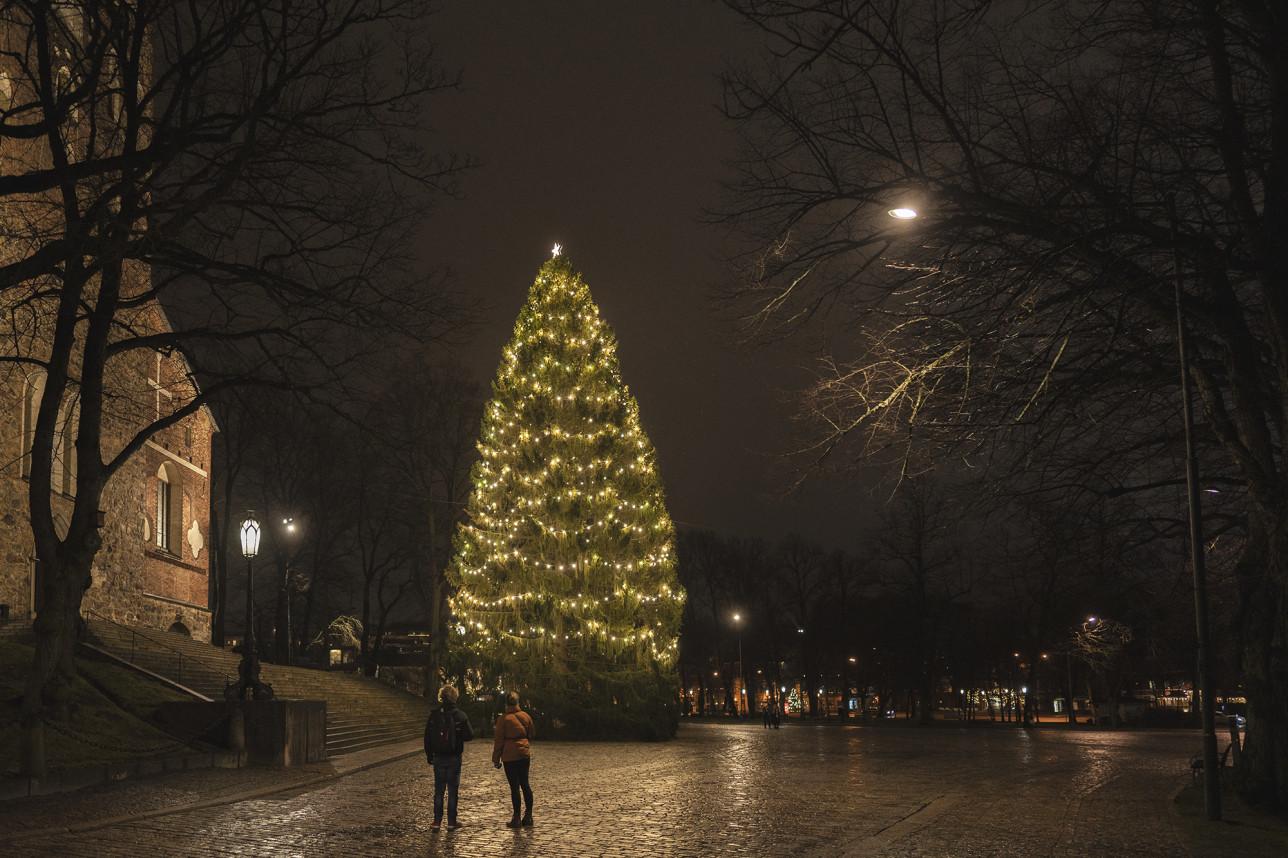 Turun tuomiokirkon joulukuusi pimeässä illassa.Edustalla seisoo kaksi ihmistä.
