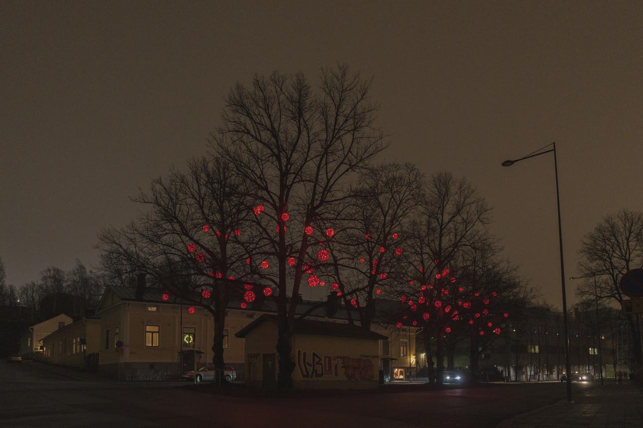 Piispankatu keltaisine puutaloineen. Paljaissa puissa hohtavat punaiset pallonmalliset jouluvalot hämärässä illassa.