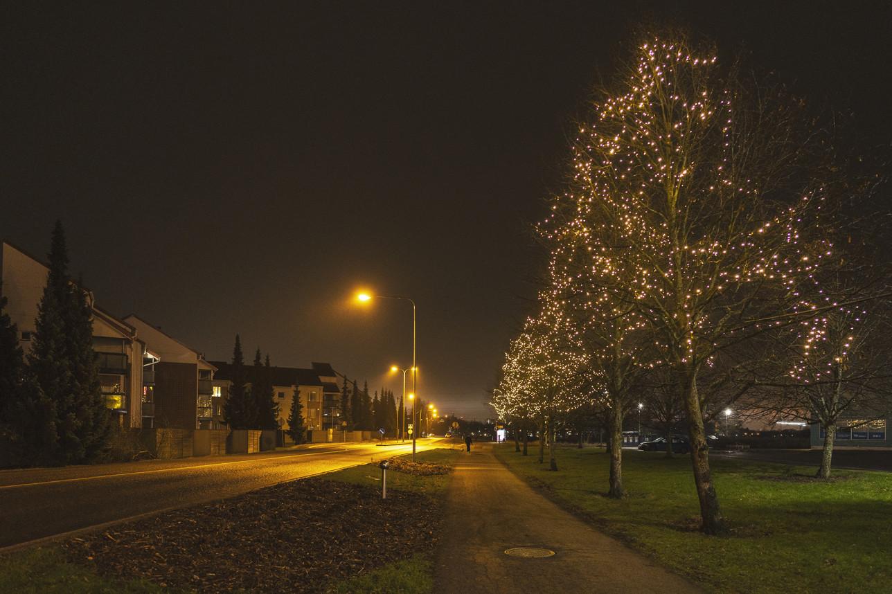 Halistenväylä, jota reunustavat puut on valaistu lämpimänsävyisin jouluvaloin pimenevässä illassa.