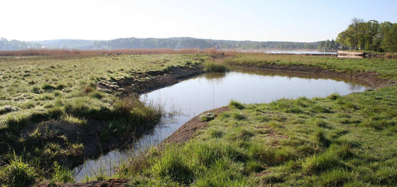 Veden virtaus hidastuu altaassa ja ravinteet ja eroosio jäävät altaan pohjalle.