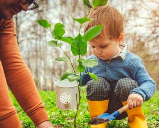 Lapsi istuttaa kasvia.