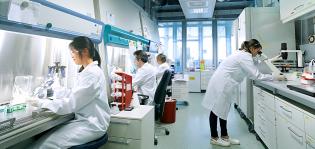 Työntekijöitä Bayerin laboratoriossa työpisteillä asianmukaiset suojavarusteet päällään.