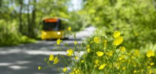 Bussi ajaa tiellä kesällä
