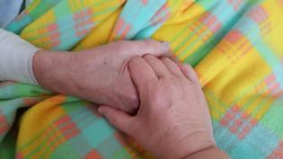 Kädet