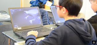 Henkilö tekee 3D-mallinnusta sammakoista.