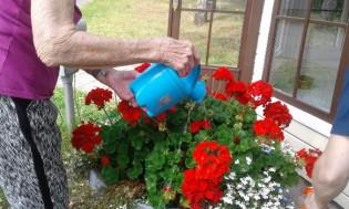 kukkien kastelu