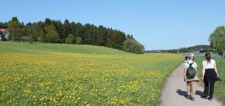 kaksi naista kävelyllä kesäisessä luonnossa