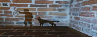 Pimeä linna, hahmo ja koira