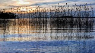 Kesäinen järvimaisema
