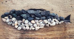 Erivärisistä kivistä ja sulista muodostettu silakanmuotoinen maataideteos