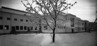 Turun kunnallisen kulkutautisairaalan rakennus vuonna 1942. Talvimaisemassa iso puu sairaalarakennuksen edessä.