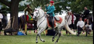 ratsastaja ja hevonen