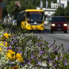 Bussi Turussa