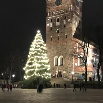 Valaistu joulukuusi Turun tuomiokirkon edessä.