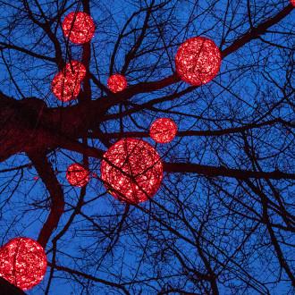Punaiset valopallot puissa