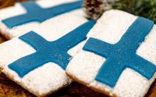 Suomen lipun näköisiksi koristellut piparit