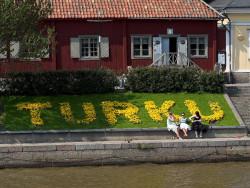 Turku kukat