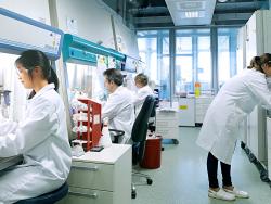 bayer_laboratorio.png
