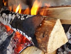 grillibanner.jpg