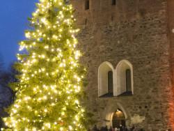 joulun-avaus-2016_timo-jakonen-1_rajattu.jpg