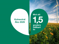 kolneutral_abo2029_sunflowers.png
