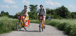 Kaksi nuorta pyöräilee Föli-fillareilla.