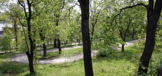 Kakolanpuistoa leimaa serpentiinitie ja iäkäs puusto.