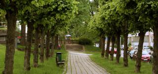 Kuvassa näkyy Kurjenkaivonkentän muotopuut ja taustalla leikipuistoaluetta