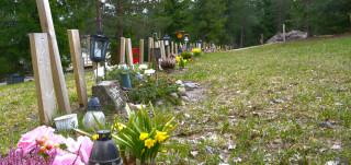 Hautoja pieneläinhautausmaalla