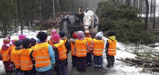 Lapset seuraavat hevosmetsurin työskentelyä