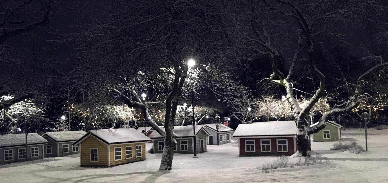 Lintupuisto ja lasten liikennepuisto saavat jouluvalaistuksen 28.11.