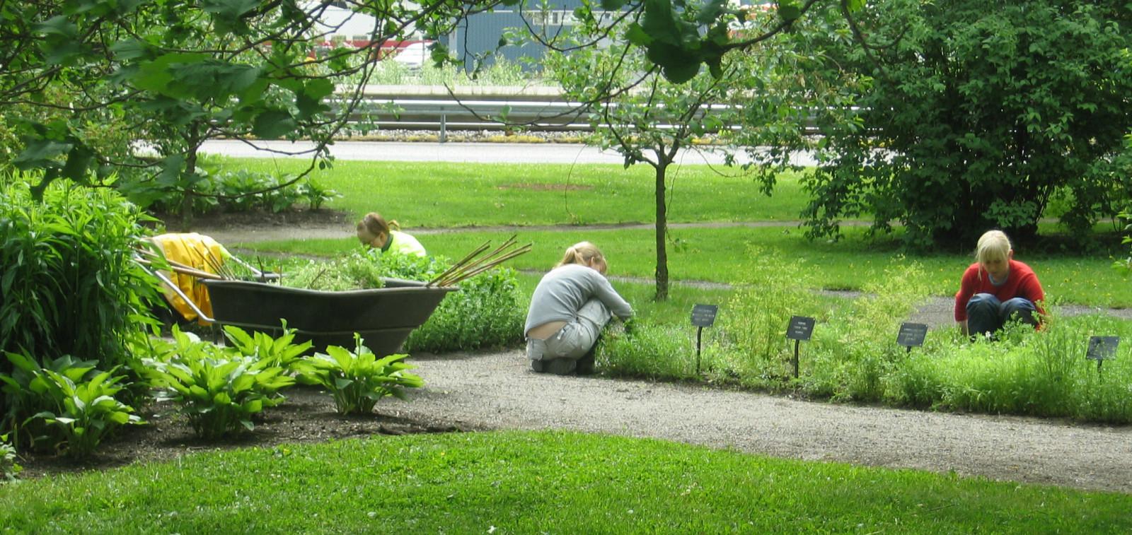 Viheraluetyöntekijöitä hoitamassa istutuksia puistossa