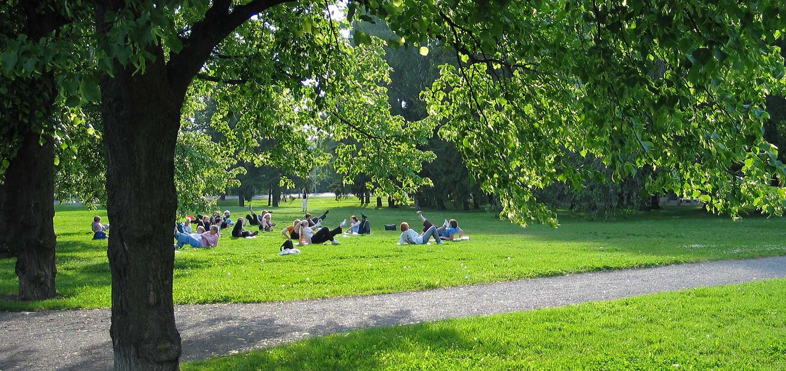 Ihmisiä nurmikolla Kupittaanpuistossa.
