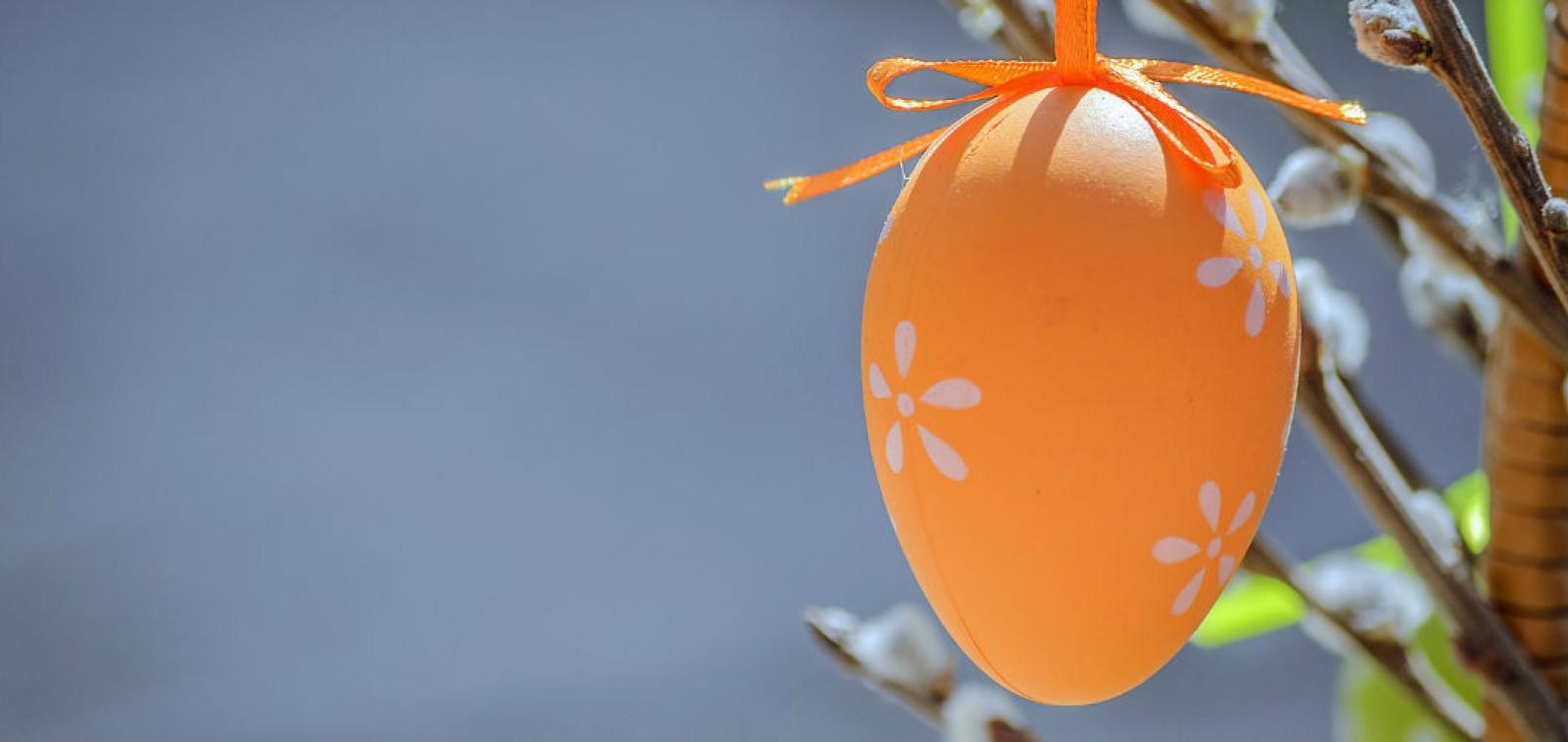 Kuvassa oranssi pääsiäismuna ja pajunoksa