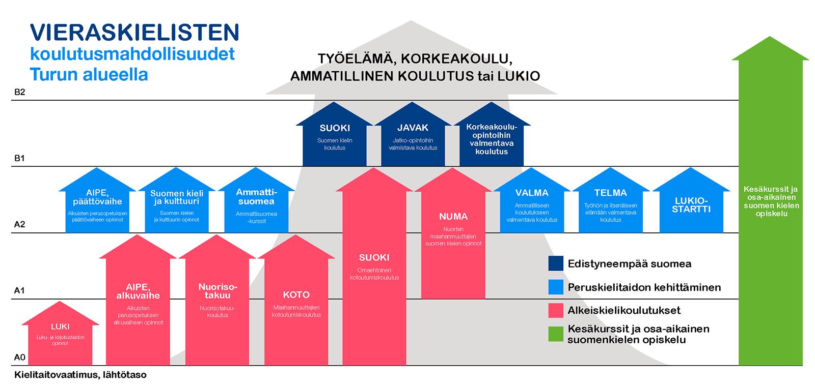 Infograafi eri tutkintojen suomenkielivaatimuksista. Löydät lisätietoa kielivaatimuksista, kun luet sivua alaspäin.