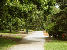 Kuvassa Barkerinpuiston päästä päähän kulkeva käytävä