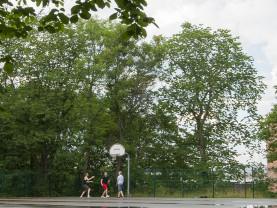Poikia pelaamassa koripalloa urheilupuistossa