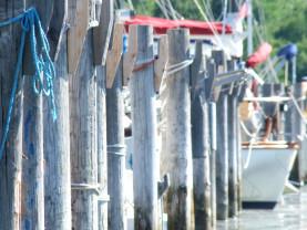 Kuvassa veneen kiinnittämiseen tarkoitettuja paaluja